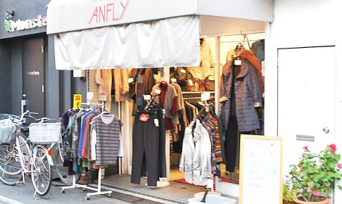 ANFLY_02