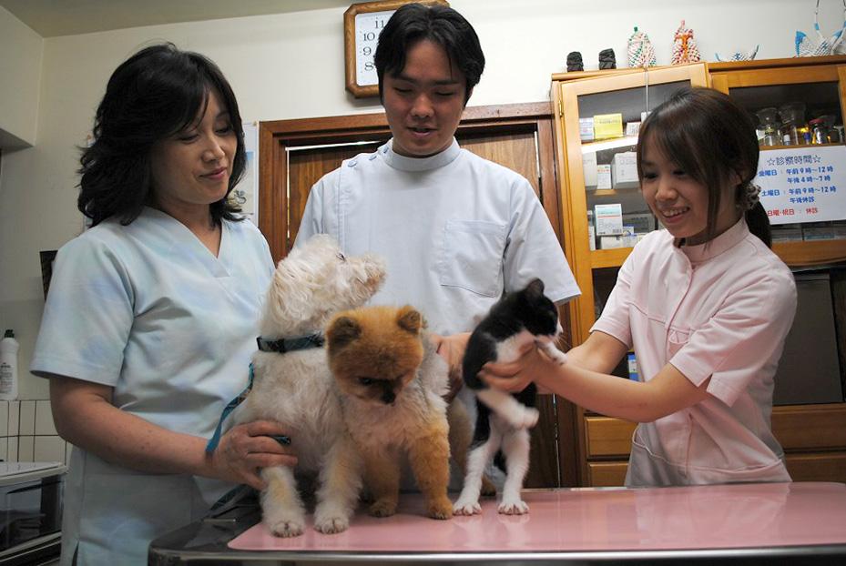 サクマ犬猫病院_01